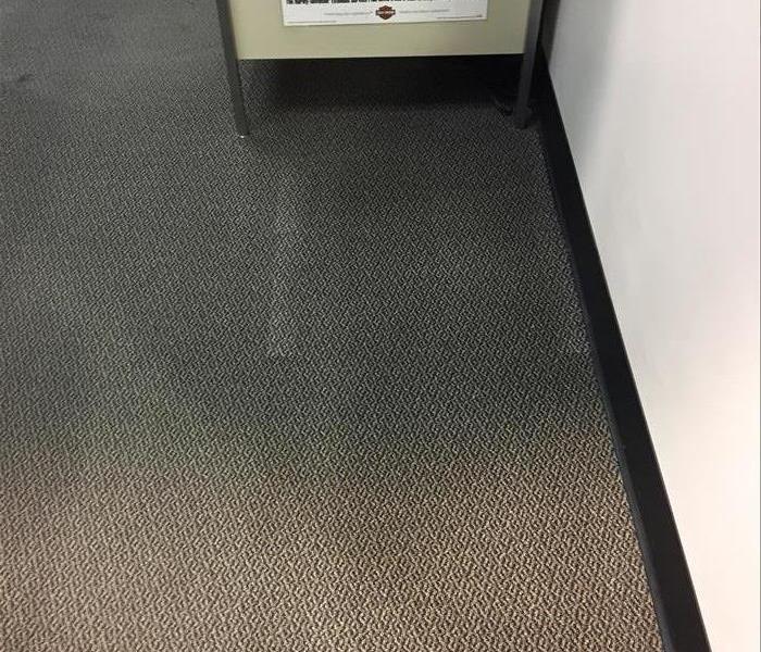 Carpet Clean In Chippewa Falls Wi Before