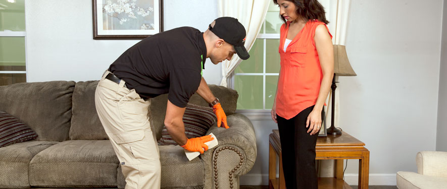 Eau Claire, WI carpet upholstery cleaning